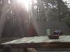 Lekker in het zonnetje